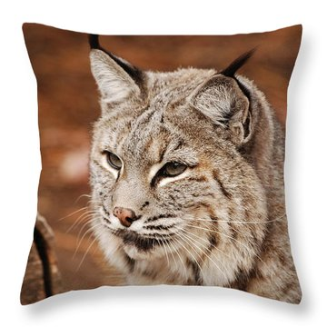 God I'm Handsome Throw Pillow