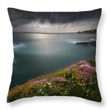 Cliff Throw Pillows