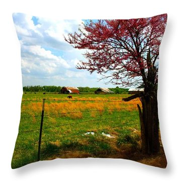 Gods Country   Commerce Miami Oklahoma Throw Pillow