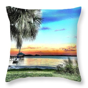 God's Country Iv Throw Pillow by Carlos Avila