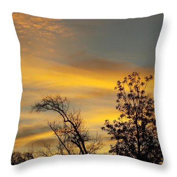 Throw Pillow featuring the photograph Gods Early Morning Palettes by John Glass