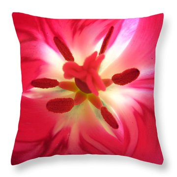 God's Floral Canvas 2 Throw Pillow