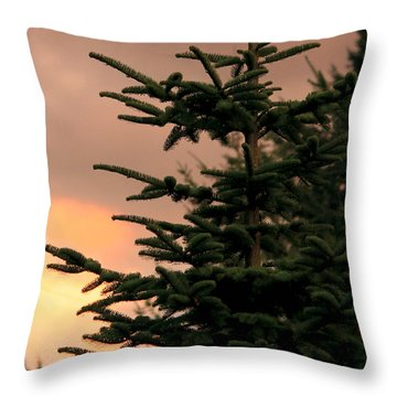 God's Gift Throw Pillow by Jeanette C Landstrom