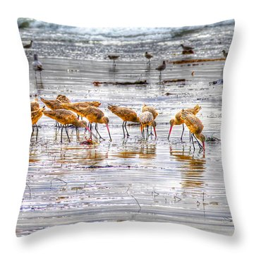 Godwits At San Elijo Beach Throw Pillow