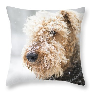 Dog's Portrait Under The Snow Throw Pillow