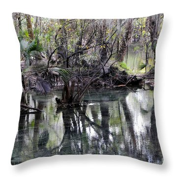 Going Back In Time Throw Pillow by Carol Groenen
