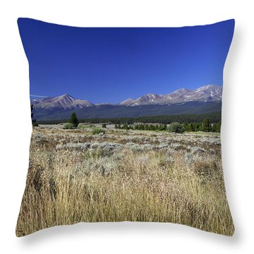 Going Blonde Throw Pillow by Jeremy Rhoades