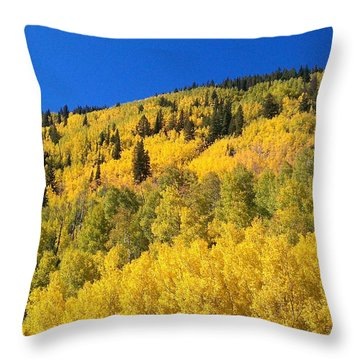 Throw Pillow featuring the photograph Going Gold by Fortunate Findings Shirley Dickerson