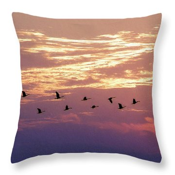 Going North Throw Pillow