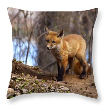 Going To The Den  Throw Pillow by Thomas Young