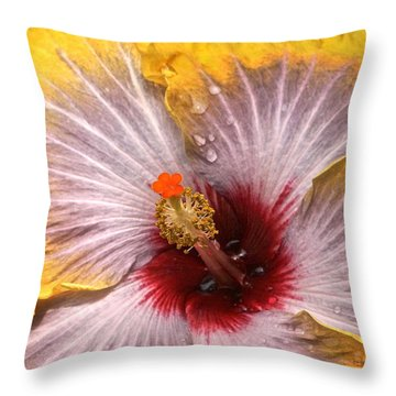 Gold And Silver And Ruby Hibiscus Close Up Throw Pillow by Byron Varvarigos