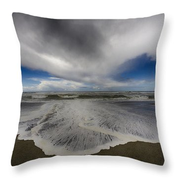 Gold Bluffs Beach 1 Throw Pillow
