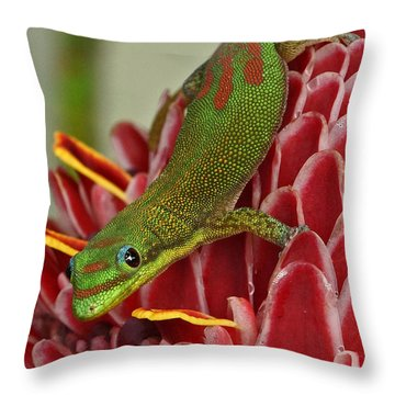 Throw Pillow featuring the photograph Gold Dust Day Gecko by Inge Riis McDonald