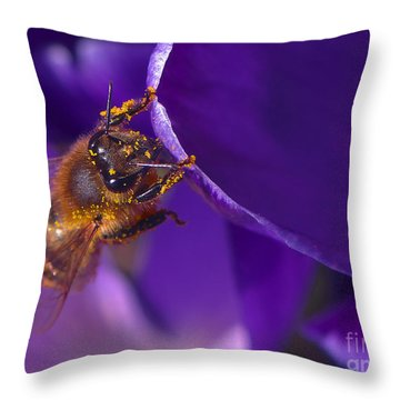 Gold Dust Throw Pillow by Sharon Talson