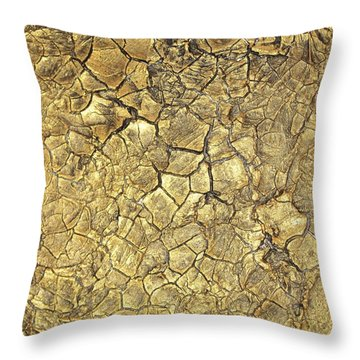 Gold Fever 1 Throw Pillow
