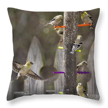 Gold Finch Cleared For Landing Throw Pillow by Cris Hayes