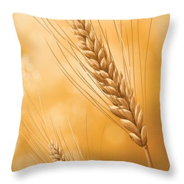 Gold Grain Throw Pillow