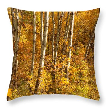 Throw Pillow featuring the photograph Gold by Jim Sauchyn