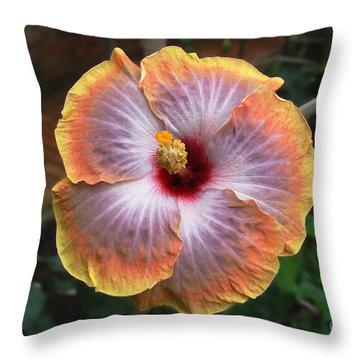 Throw Pillow featuring the photograph Gold Rim Hibiscus by Susan Wiedmann