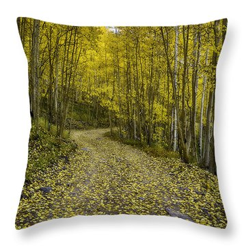 Golden Aspen Road Throw Pillow