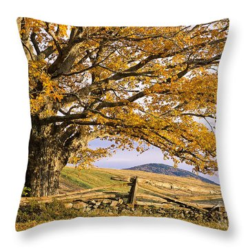 Golden Autumn Throw Pillow by Alan L Graham