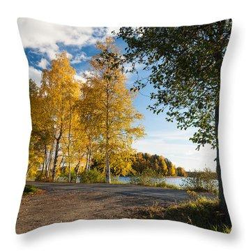 Golden Autumn Birches Throw Pillow