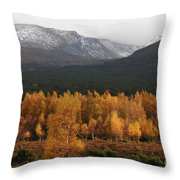 Throw Pillow featuring the photograph Golden Autumn - Cairngorm Mountains by Phil Banks