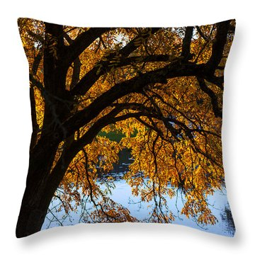Golden Autumn Leaves Throw Pillow by Garry Gay
