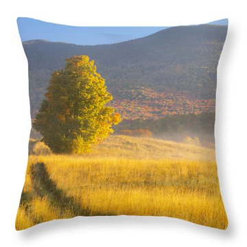 Golden Autumn Morning Throw Pillow
