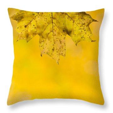Throw Pillow featuring the photograph Golden Autumn by Sebastian Musial