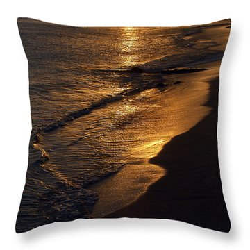 Golden Beach Throw Pillow by Yue Wang