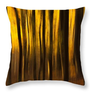 Golden Blur Throw Pillow by Anne Gilbert