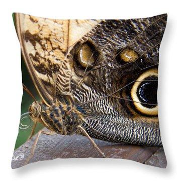 Golden Butterfly Throw Pillow
