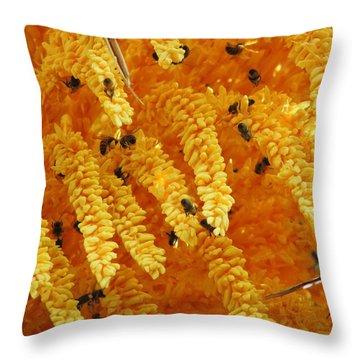 Golden  Buzz Throw Pillow