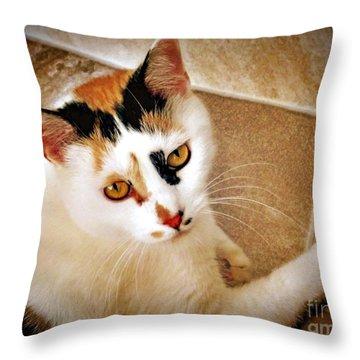 Golden Calico Throw Pillow by Phyllis Kaltenbach