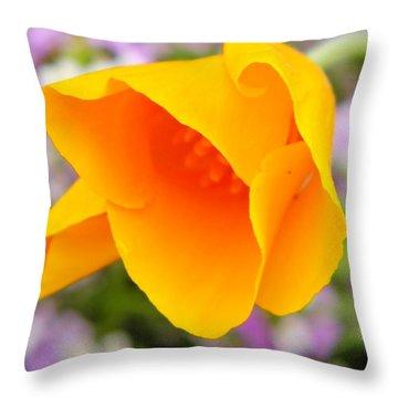 Golden California Poppy Throw Pillow by Chris Berry