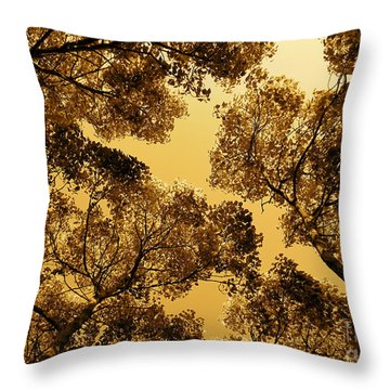 Golden Camphor Throw Pillow