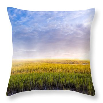 Throw Pillow featuring the photograph Golden Coastal Marshes At Dawn - Georgia by Mark E Tisdale