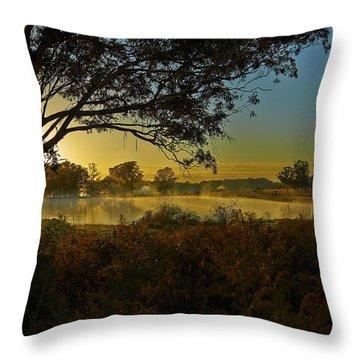 Billabong Sunrise Throw Pillow