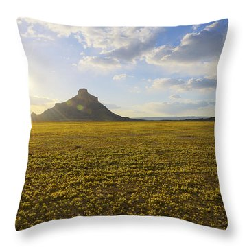 Golden Desert Throw Pillow