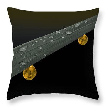 Golden Dew Throw Pillow by Angela A Stanton