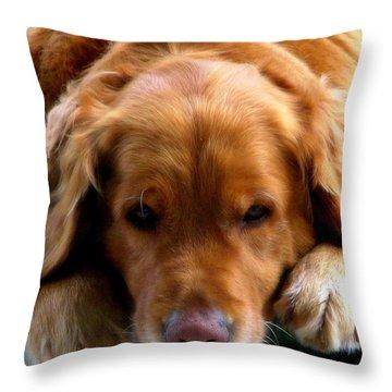 Golden Dreams Throw Pillow by Karen Wiles