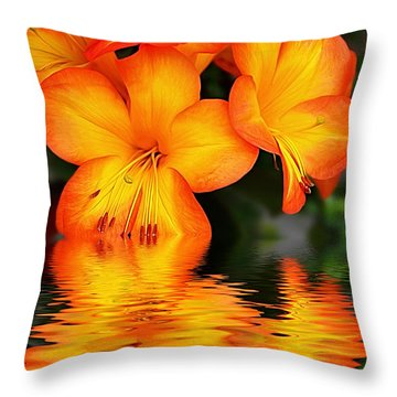 Golden Dreams Throw Pillow by Kaye Menner