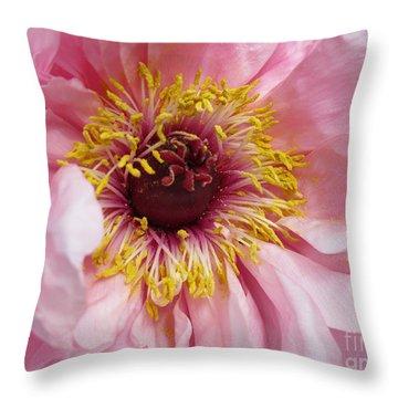 Throw Pillow featuring the photograph Golden Dust by Arlene Carmel
