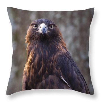 Golden Eagle 4 Throw Pillow
