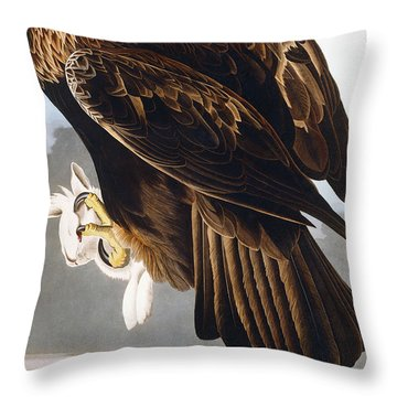 Golden Eagle Throw Pillow by John James Audubon