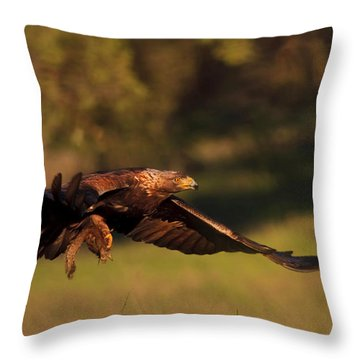 Golden Eagle On The Hunt Throw Pillow