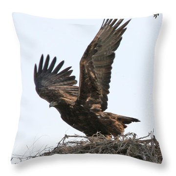 Throw Pillow featuring the photograph Golden Eagle Takes Off by Bill Gabbert