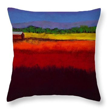 Golden Field Throw Pillow by David Patterson