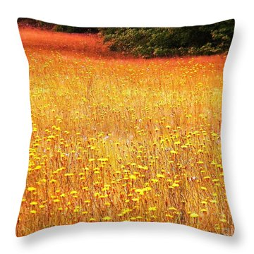 Golden Pastures Throw Pillow